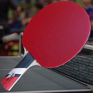 Custom Gambler Professional Table Tennis Paddle