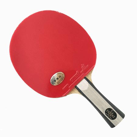 Palio Expert 2 Table Tennis Racket