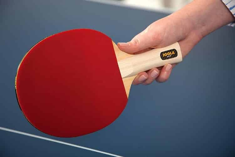 Holding Ping Pong Paddle